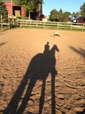 Shadow Horse