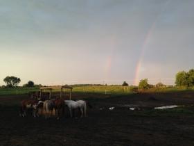 Rainbow Evening