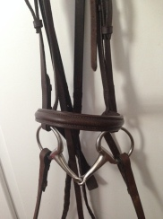 Finished bridle
