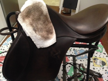 Clean saddle with cloth