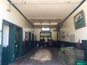 Inside the stallion section