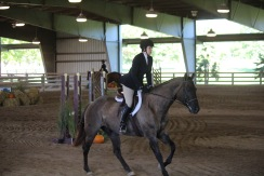 Uphill canter in the under saddle